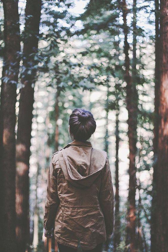 priroda