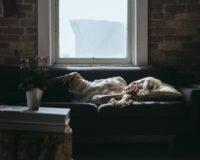 Šta pozicija u kojoj spavate govori o vama