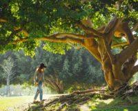 4 fizičke aktivnosti koje će poboljšati vaše mentalno zdravlje